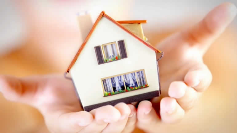 Home in Hands image